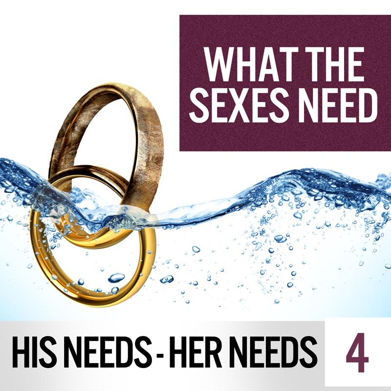HIS NEEDS HER NEEDS 4